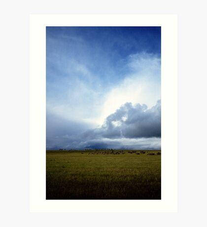 Coming Rain, Mallee 2 Art Print