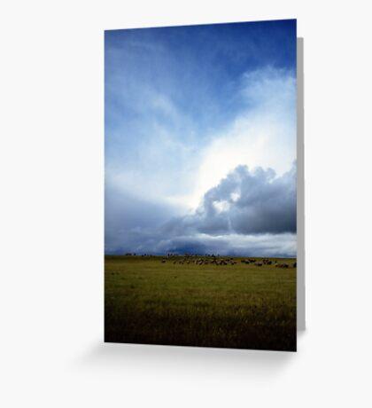 Coming Rain, Mallee 2 Greeting Card