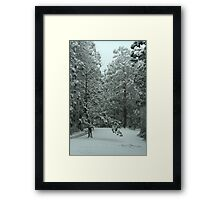 Snowing in Mt Disappointment Forest Framed Print