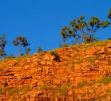 Chamberlain Gorge by Paige