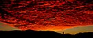 Red heaven by Paige