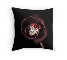 A Thing of Beauty............ Throw Pillow