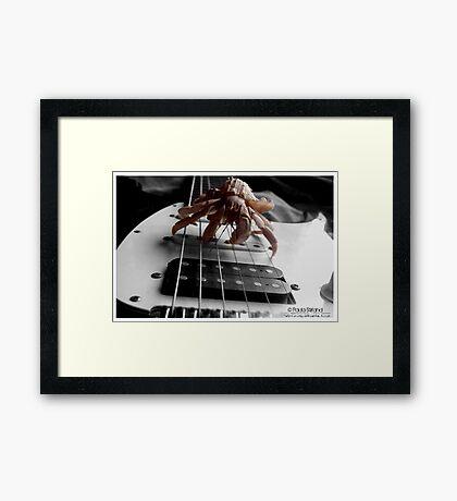 Stairway to Hermie Heaven Framed Print