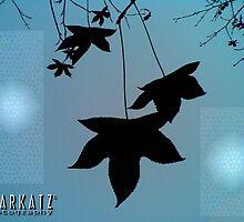 ORIENTAL -1 by StarKatz