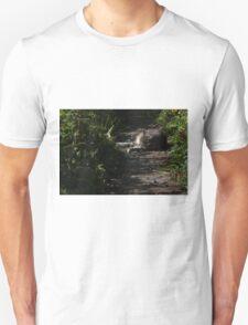 Sleeping kitty Unisex T-Shirt
