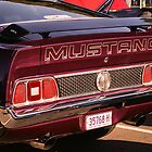 Mustang by ScottyL