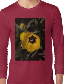 Sunny Yellow in the Shadows - a Cheerful Spring Tulip Long Sleeve T-Shirt
