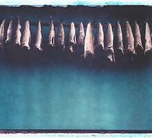 """""""Icelandic Stockfish"""" by Hanszio"""