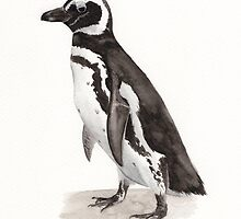 Penguin Watercolor Painting by JotaLara