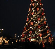 Christmas Holiday Card 3398V - LIDO Tree at Night  by FirstTree