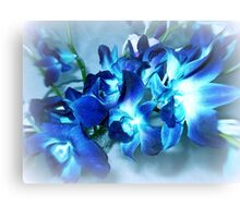 Singapore Orchids- in Blue Canvas Print