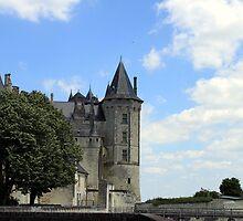 Château de Saumur by TheRoacH
