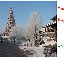 Christmas Card 5527 - LIDO Christmas Tree in Riga Latvia by FirstTree