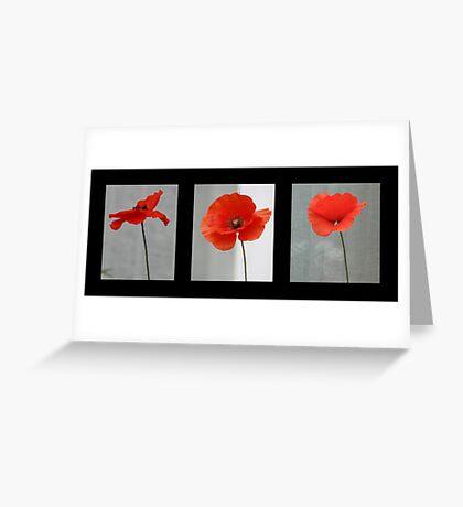 Poppy in Three Greeting Card