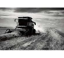 Canola Harvest, Coorong Photographic Print