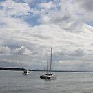 bribie island 1 by aussieazsx