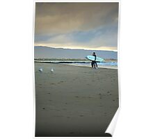 surfers and gulls Poster