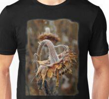 Photo of an aging sunflower Unisex T-Shirt