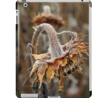 Photo of an aging sunflower iPad Case/Skin