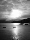 Evening in Akaroa by Paul Finnegan