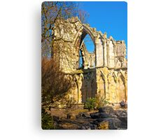 Ruins of St Mary's Abbey  -  York #2 Metal Print