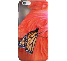 Monarch on Hibiscus iPhone Case/Skin