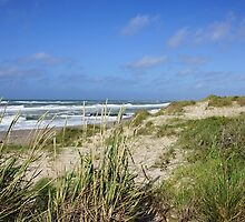 Skagen Beach by Aase