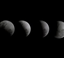 Lunar Eclipse by Andrew Dickman