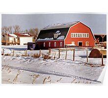 Winter Scene near Edmonton, Alberta, Canada Poster