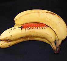 I Think I'm Going Bananas!! by Sandra Cockayne