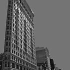 The Flat Iron Building by photographist