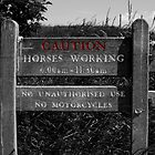 Horses Working Sign by Michael  Addison
