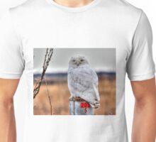 BIG SNOWY  Unisex T-Shirt