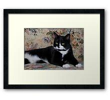 Victorian Kitty Framed Print