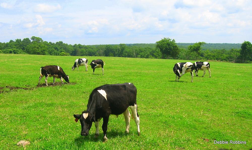 Yummy Pasture by Debbie Robbins