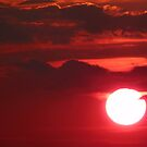 Romancing the Sun... by LindaR