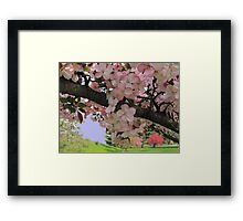 Blossoms In Pink Framed Print