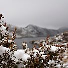 Walking in a Winter Wonderland_Cradle Mountain by Sharon Kavanagh