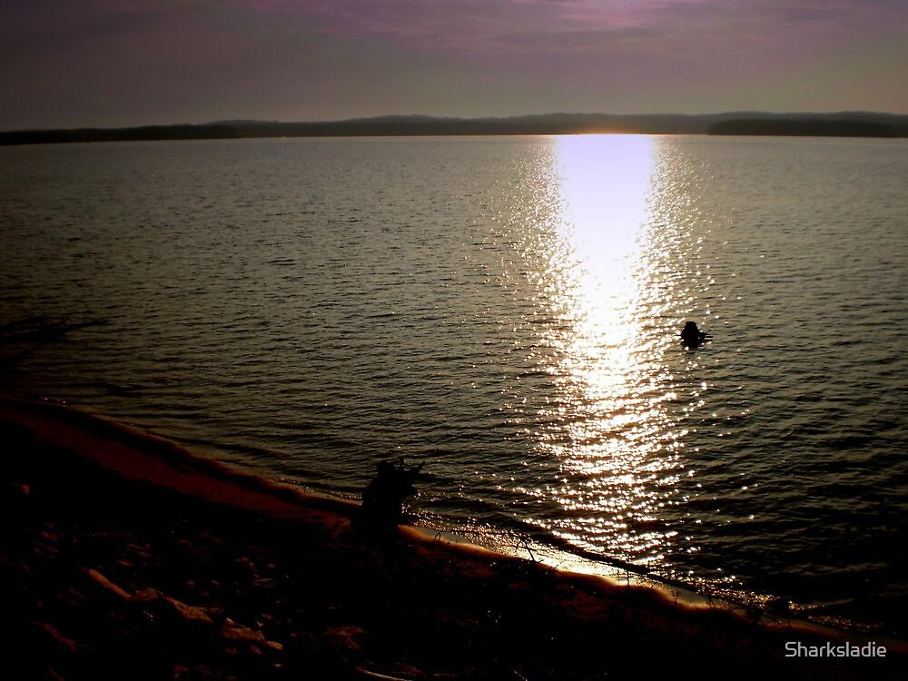 Dawn Breaks on Jordan Lake by Sharksladie