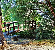 Foot Bridge, Umatilla Washington... by trueblvr