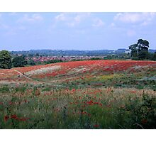 Poppy field, West Midlands, England (view larger for best effect) Photographic Print