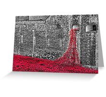 Cascade Of Poppies Greeting Card
