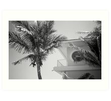 Tropical Blend Art Print