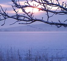 The Rising Sun in Winter by DeePhoto