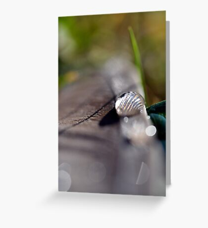 The lonely water drop Greeting Card