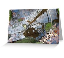 Brook Reflection Portrait Greeting Card