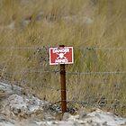 Falklands minefield by Stephen Kane