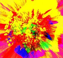 Floral Explosion by Stan Owen