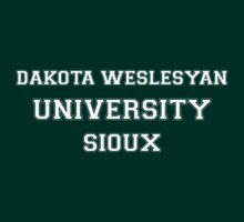 DAKOTA WESLESYAN UNIVERSITY SIOUX by HelenCard