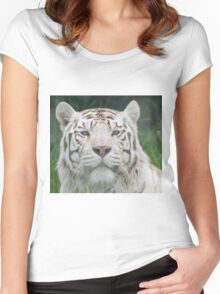 White Tiger Staring Match Women's Fitted Scoop T-Shirt